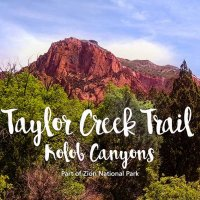 Taylor Creek Trail | Kolob Canyons | Zion National Park