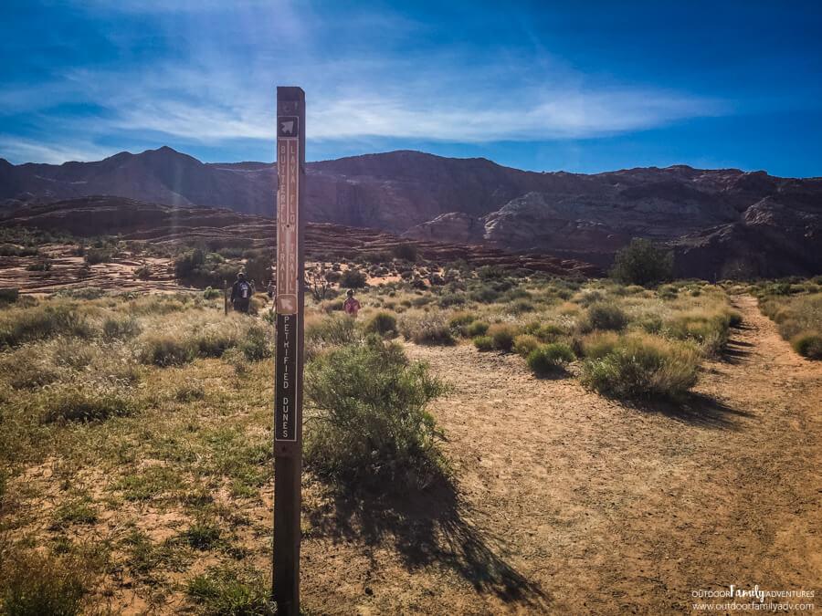 Petrified Dunes Snow Canyon State Park