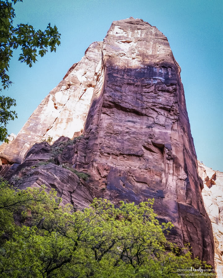 riverside-walk-zion-national-park-7