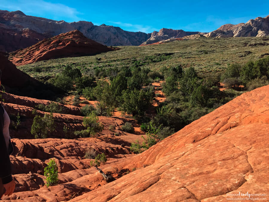 Butterfly Trail - Snow Canyon State Park - Hiking With Kids
