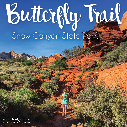 Butterfly Trail Snow Canyon State Park