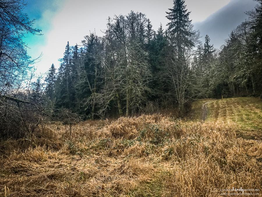 Lord-Hill-Regional-Park-Snohomish-WA-18
