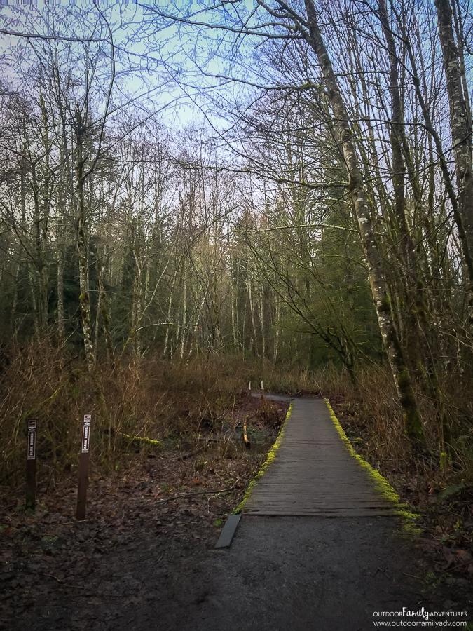Lord-Hill-Regional-Park-Snohomish-WA-20