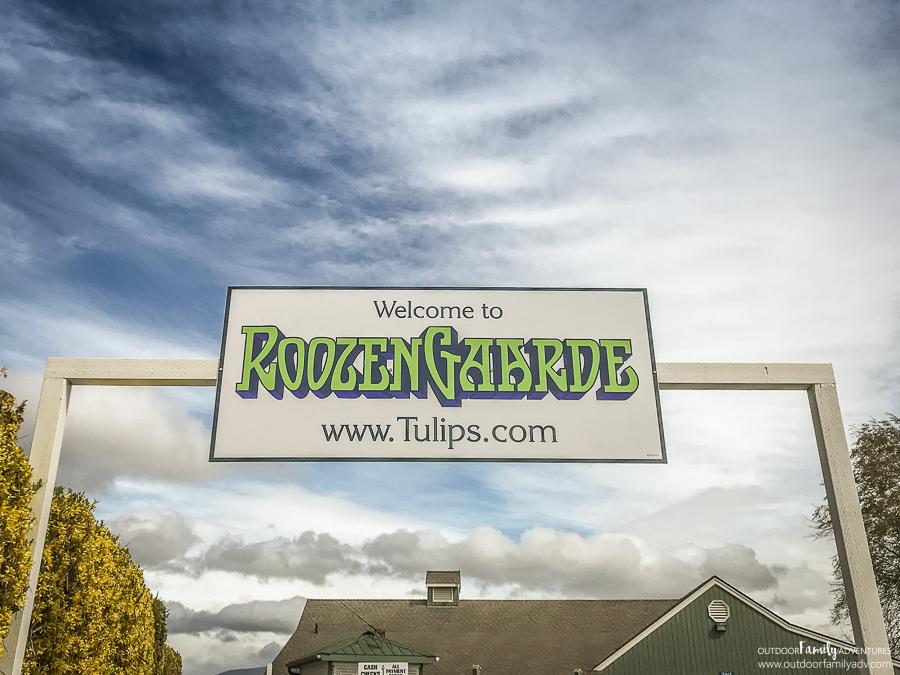 Skagit-Valley-Tulips-RoozenGaarde-10